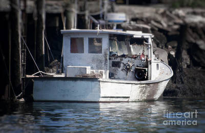 Old Fishing Boat Art Print by Loriannah Hespe