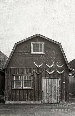 Fishing Shack Photograph - Old Fishing Shack Pei by Edward Fielding