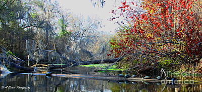 Photograph - Old Florida Along The Sante Fe River by Barbara Bowen