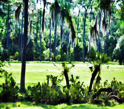 Photograph - Old Florida Landscape by Sandy Poore