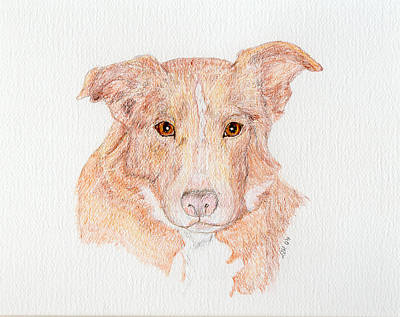 Painting - Old Friend Juno by Stephanie Grant