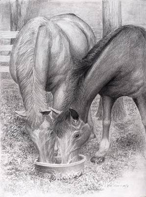 Animals Drawings - Old Friends by Rick Moore