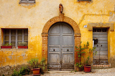 Food And Flowers Still Life - Old Front Door by Brian Jannsen