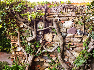 Stonewall Photograph - Old Garden Wall by Lutz Baar