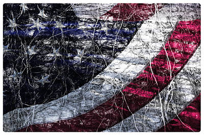 Photograph - Old Glory by Davina Washington