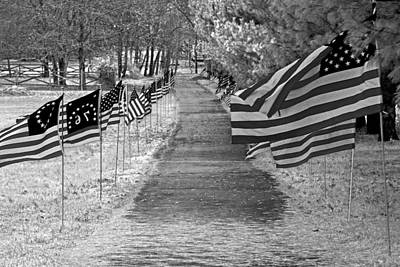 Old Glory Ir Art Print