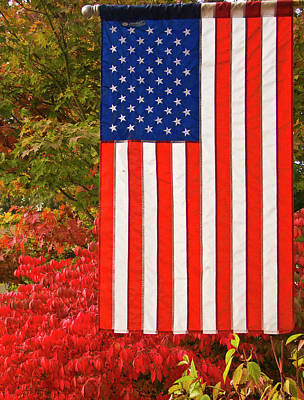 Photograph - Old Glory by Ron Roberts