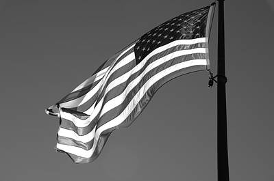 Art Print featuring the photograph Old Glory by Ron White