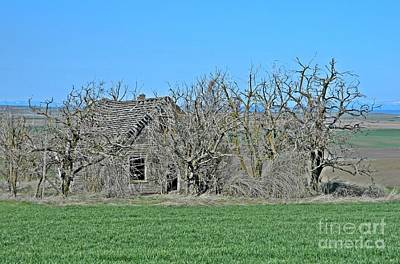 Neurotic Images Photograph - Old Goldendale Homestead 2 by Chalet Roome-Rigdon