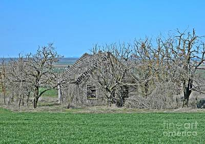 Photograph - Old Goldendale Homestead 3 by Chalet Roome-Rigdon