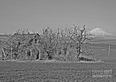 Photograph - Old Goldendale Homestead Bw 2 by Chalet Roome-Rigdon