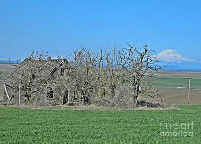 Photograph - Old Goldendale Homestead by Chalet Roome-Rigdon