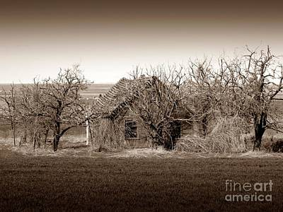 Photograph - Old Goldendale Homestead Sepia 2 by Chalet Roome-Rigdon