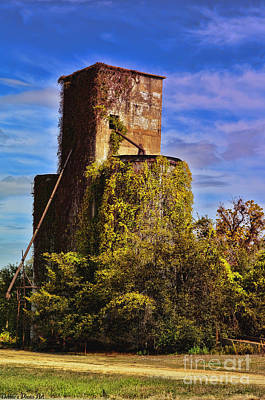 Photograph - Old Grain Silo With Vines by Debbie Portwood