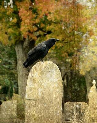 Birds In Graveyard Photograph - Old Graveyard And Crow by Gothicrow Images