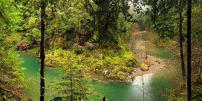 Photograph - Old Growth Forest And River by Leland D Howard