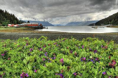 Old Haines Cannery Art Print