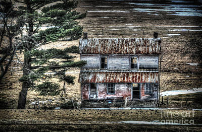 Old Home Place With Birds In Front Yard Print by Dan Friend