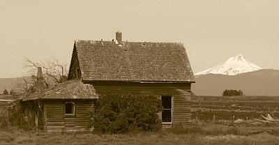 Photograph - Old Homestead by Angie Vogel