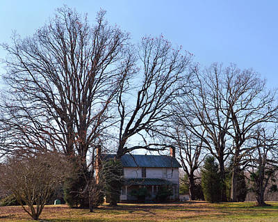 Old House Big Trees Old 421 - 51008801b Art Print