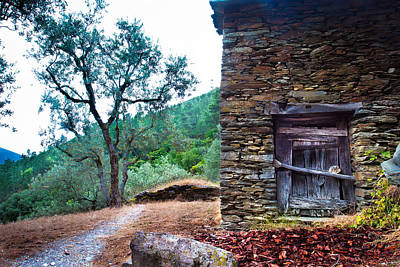 Photograph - Old House by Edgar Laureano