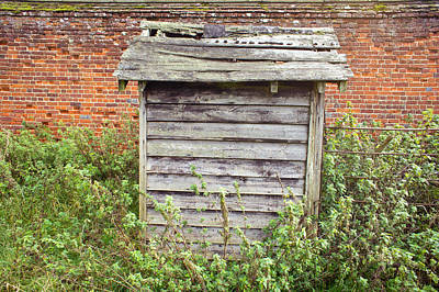 Tiny House Wall Art - Photograph - Old Hut by Tom Gowanlock