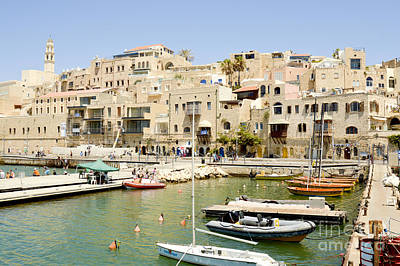 Old Jaffa Port Print by Tomi Junger
