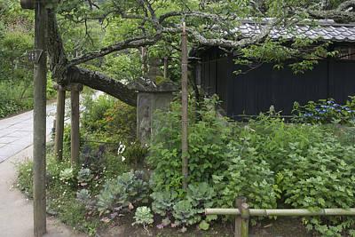 Photograph - Old Japan by Masami Iida