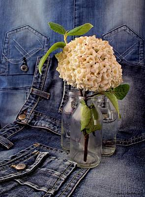 Still Life Photograph - Old Jeans And Flowers by Guna  Andersone