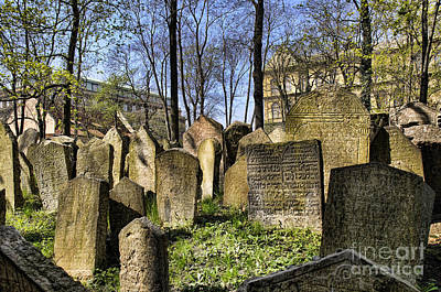Photograph - Old Jewish Cemetery by Brenda Kean