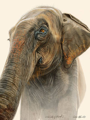 Elephants Digital Art - Old Lady Of Nepal 2 by Aaron Blaise