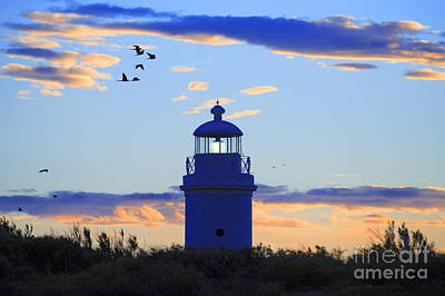Old Lighthouse Art Print by Bernardo Galmarini