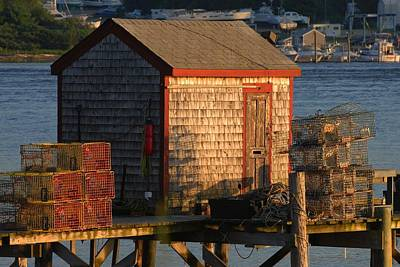 Photograph - Old Lobster Shack by Pamela Hodgdon