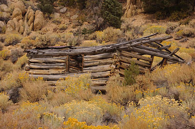 Photograph - Old Log Cabin 2 by Sherri Meyer