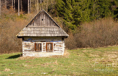 Photograph - Old Log Home by Les Palenik