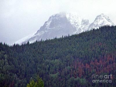 Photograph - Old Man Mountain by Christian Mattison