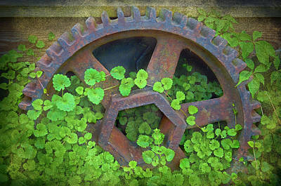 Old Mill Of Guiford Grinding Gear Art Print by Sandi OReilly