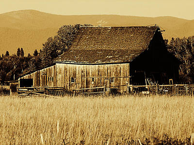 Photograph - Old Montanna Barn by Ron Roberts