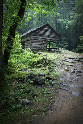Old Mountain Cabin Art Print by Larry Bohlin
