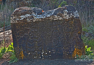 Photograph - Old Native American Petroglyphs Pictogram by Valerie Garner