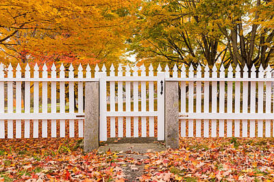 Parcs Photograph - Old New England White Picket Fence by Edward Fielding