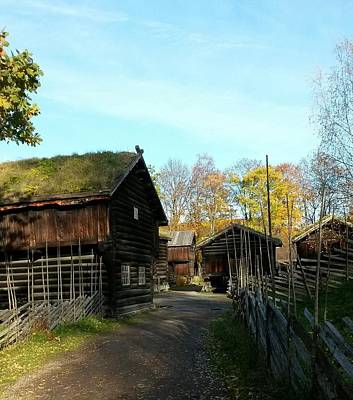 Photograph - Old Norwegian Houses by Jeanette Rode Dybdahl