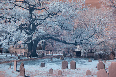 Photograph - Old Oak Tree Cemetery by Jeff Folger