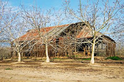 Old Orchard Barn Original