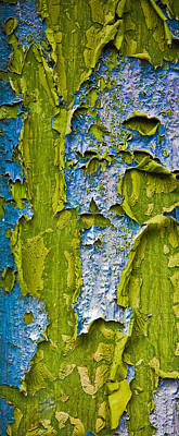 Natural Abstract Photograph - Old Paint by Frank Tschakert
