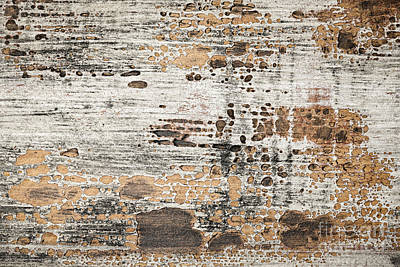 Neglect Photograph - Old Painted Wood Abstract No.1 by Elena Elisseeva