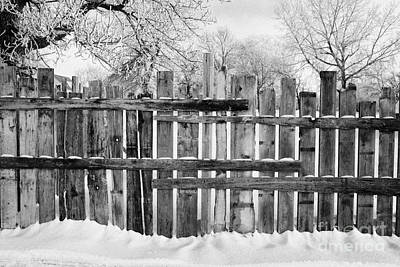 Harsh Conditions Photograph - old patched up wooden fence using old bits of wood in snow Forget Saskatchewan Canada by Joe Fox