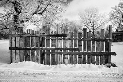 Harsh Conditions Photograph - old patched up wooden fence using old bits of wood in snow Forget Saskatchewan  by Joe Fox