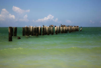 Photograph - Old Pier  Naples Bay by Carol Kinkead