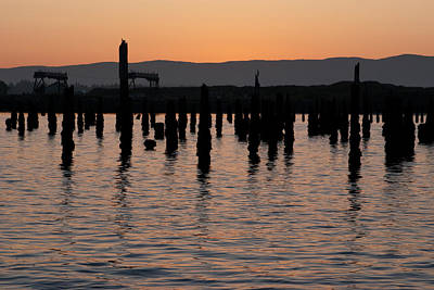 Photograph - Old Pier Posts by Erin Kohlenberg